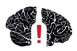 mózg alkoholika
